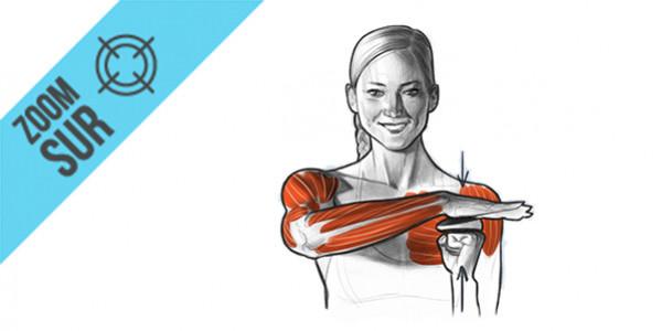 Activ5, les bienfaits de l'entraînement isométrique dans le sport
