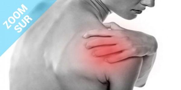 Zoom sur le complexe articulaire de l'épaule